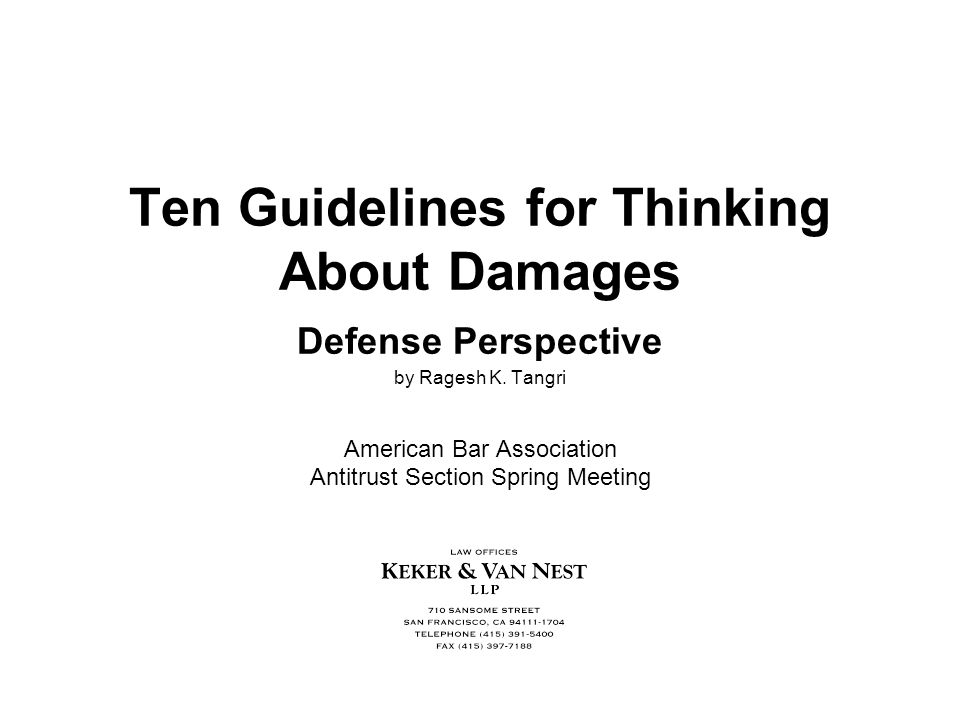 Ten Guidelines for Thinking About Damages Defense Perspective by Ragesh K.