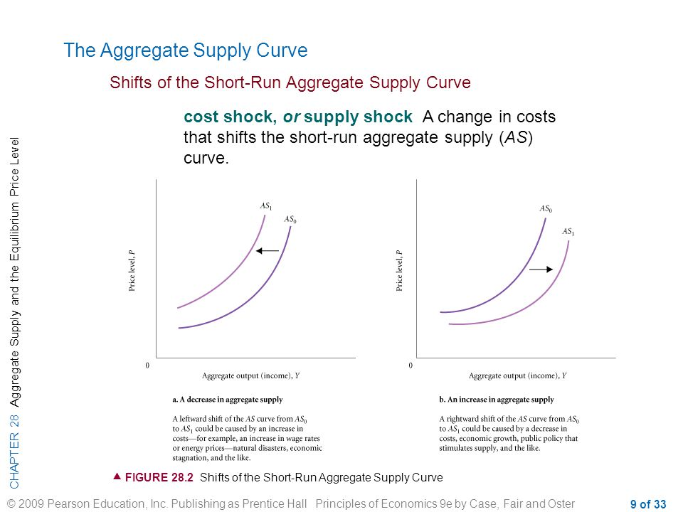 CHAPTER 28 Aggregate Supply and the Equilibrium Price Level © 2009 Pearson Education, Inc. Publishing as Prentice Hall Principles of Economics 9e by C