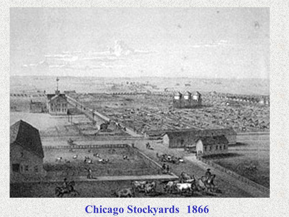 Chicago Stockyards 1866