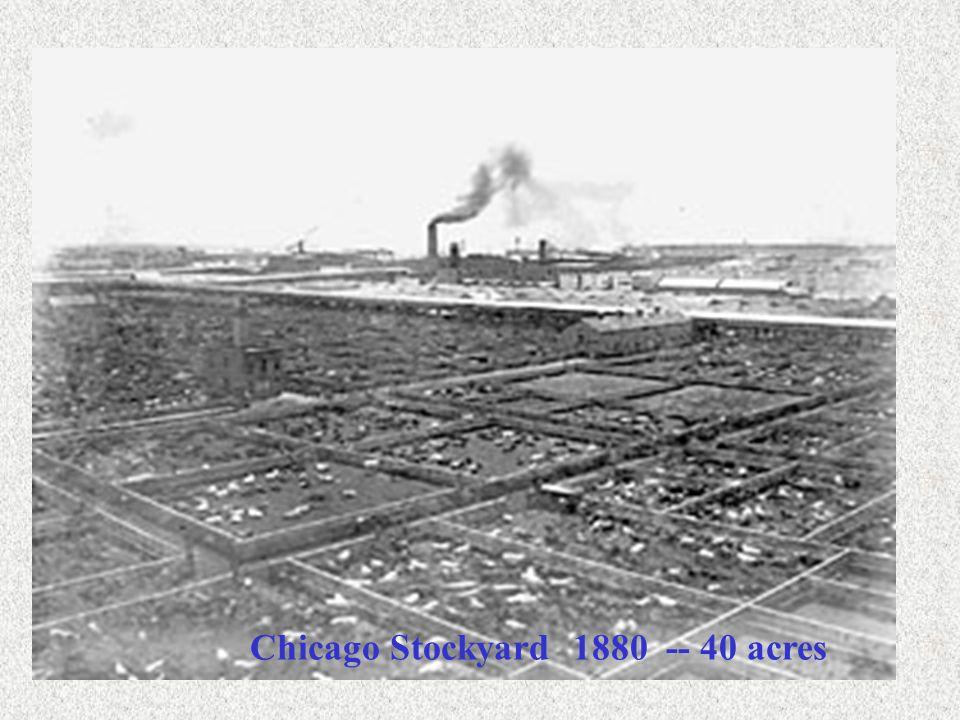 Chicago Stockyard 1880 -- 40 acres