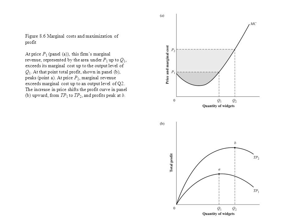 Figure 8.6 Marginal costs and maximization of profit At price P 1 (panel (a)), this firms marginal revenue, represented by the area under P 1 up to Q