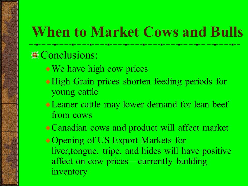 When to Market Cows and Bulls Conclusions: We have high cow prices High Grain prices shorten feeding periods for young cattle Leaner cattle may lower