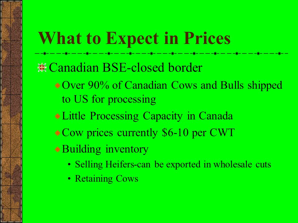 What to Expect in Prices Canadian BSE-closed border Over 90% of Canadian Cows and Bulls shipped to US for processing Little Processing Capacity in Can