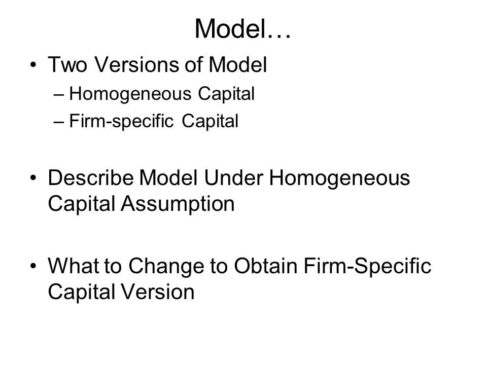 Model… Two Versions of Model –Homogeneous Capital –Firm-specific Capital Describe Model Under Homogeneous Capital Assumption What to Change to Obtain