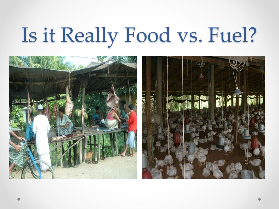 Is it Really Food vs. Fuel?