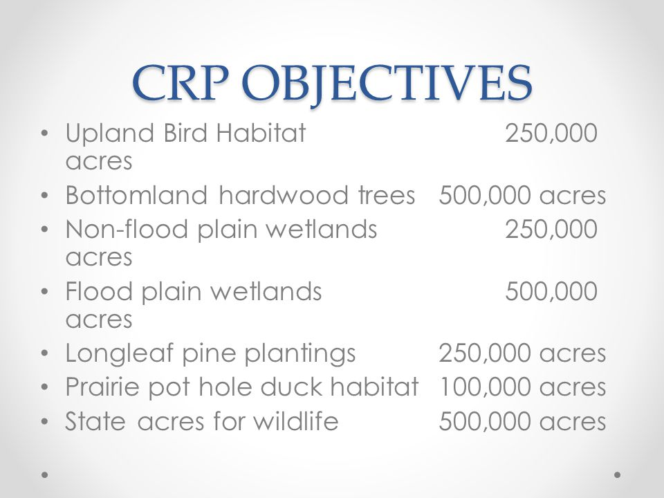 CRP OBJECTIVES Upland Bird Habitat250,000 acres Bottomland hardwood trees500,000 acres Non-flood plain wetlands250,000 acres Flood plain wetlands500,0