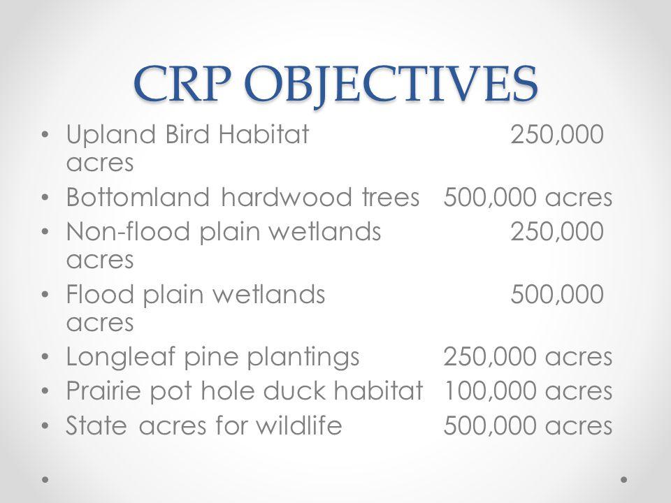CRP OBJECTIVES Upland Bird Habitat250,000 acres Bottomland hardwood trees500,000 acres Non-flood plain wetlands250,000 acres Flood plain wetlands500,000 acres Longleaf pine plantings250,000 acres Prairie pot hole duck habitat100,000 acres State acres for wildlife 500,000 acres