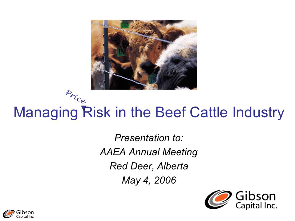 Managing Risk in the Beef Cattle Industry Presentation to: AAEA Annual Meeting Red Deer, Alberta May 4, 2006 Price