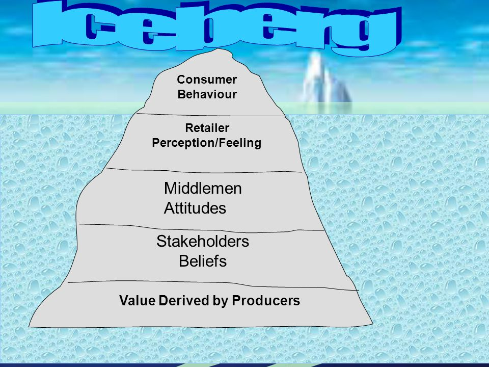 Consumer Behaviour Retailer Perception/Feeling Middlemen Attitudes Stakeholders Beliefs Value Derived by Producers
