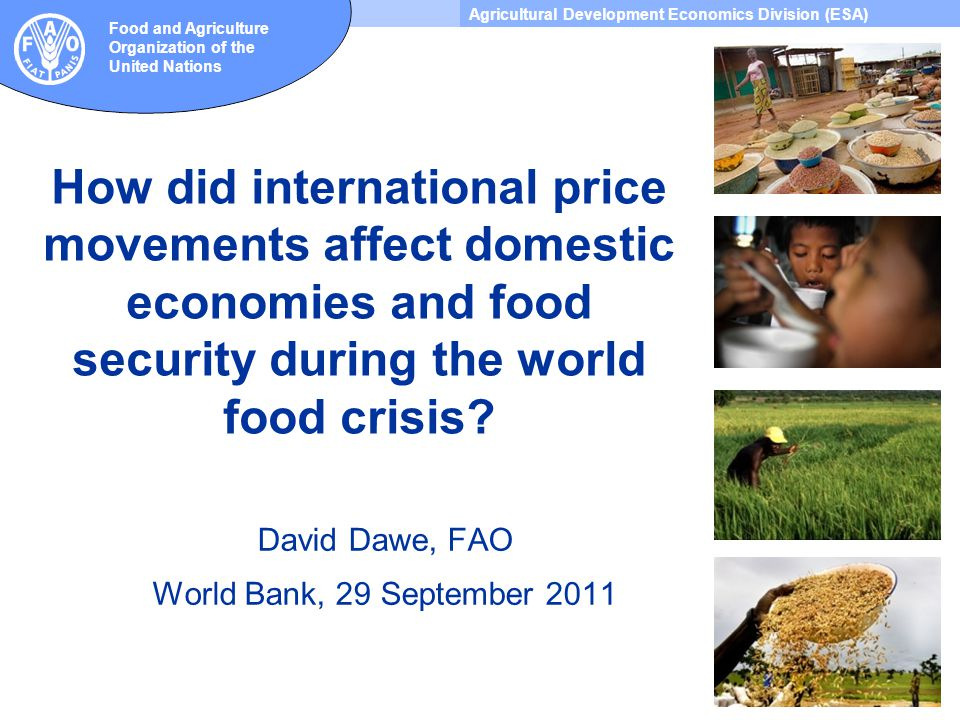 Agricultural Development Economics Division (ESA) Food and Agriculture Organization of the United Nations How did international price movements affect domestic economies and food security during the world food crisis.