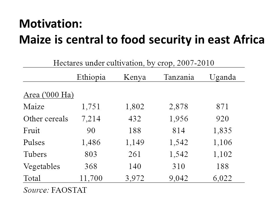 Motivation: Maize is central to food security in east Africa Hectares under cultivation, by crop, 2007-2010 EthiopiaKenyaTanzaniaUganda Area ( 000 Ha) Maize1,7511,8022,878871 Other cereals7,2144321,956920 Fruit901888141,835 Pulses1,4861,1491,5421,106 Tubers8032611,5421,102 Vegetables368140310188 Total11,7003,9729,0426,022 Source: FAOSTAT