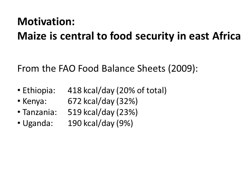 Motivation: Maize is central to food security in east Africa From the FAO Food Balance Sheets (2009): Ethiopia: 418 kcal/day (20% of total) Kenya: 672 kcal/day (32%) Tanzania: 519 kcal/day (23%) Uganda: 190 kcal/day (9%)