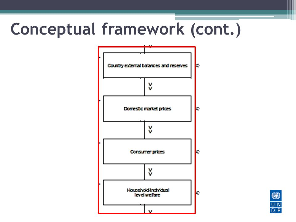 Conceptual framework (cont.)