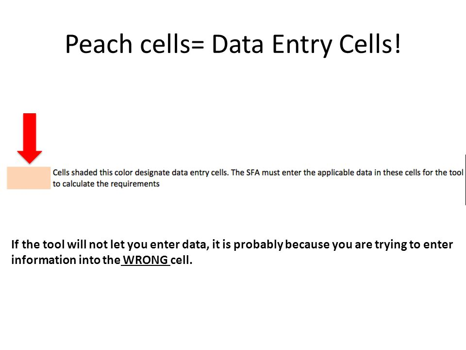 Peach cells= Data Entry Cells! If the tool will not let you enter data, it is probably because you are trying to enter information into the WRONG cell