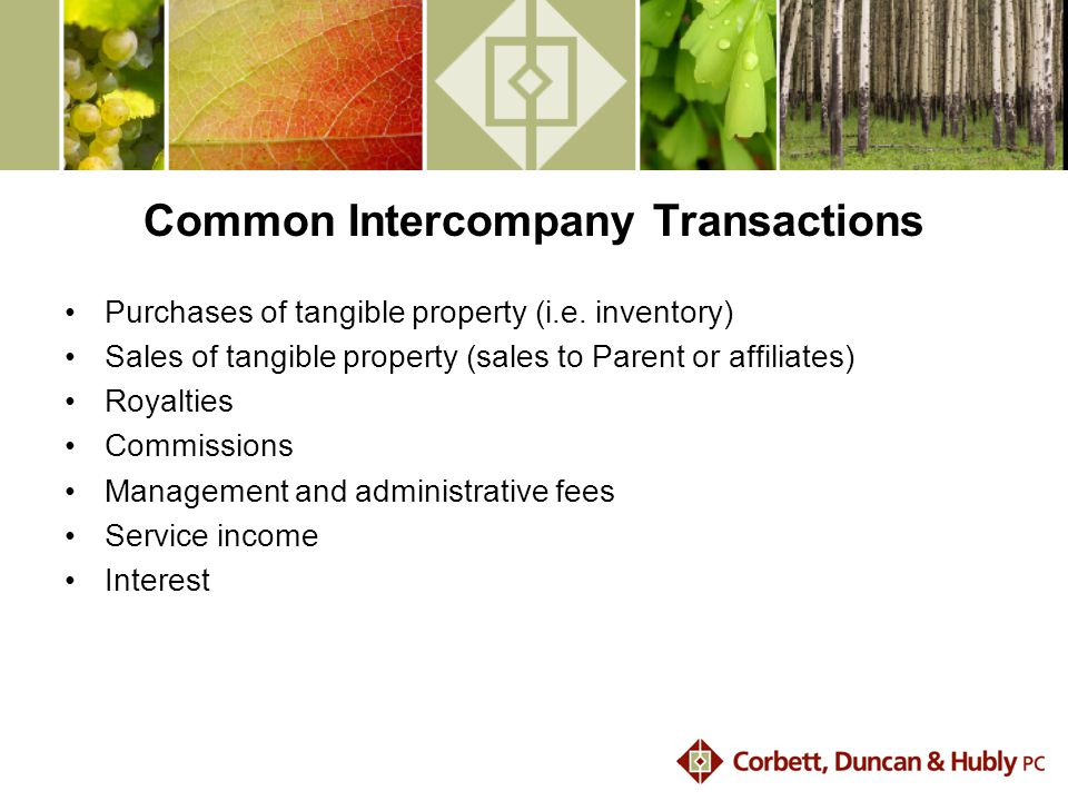 Common Intercompany Transactions Purchases of tangible property (i.e.