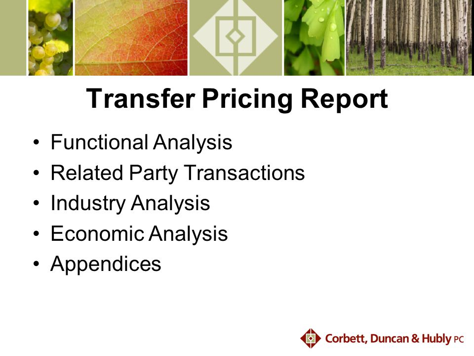 Transfer Pricing Report Functional Analysis Related Party Transactions Industry Analysis Economic Analysis Appendices