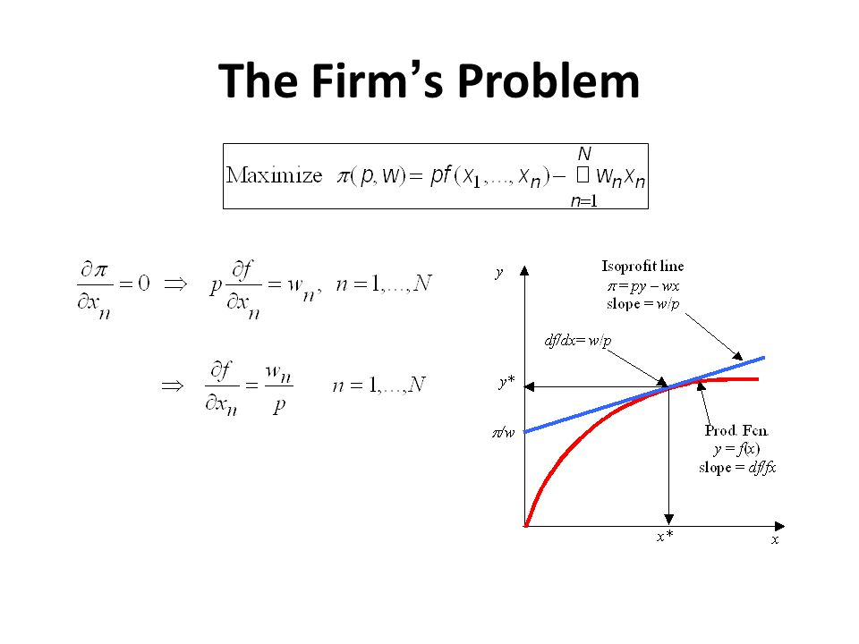 The Firms Problem