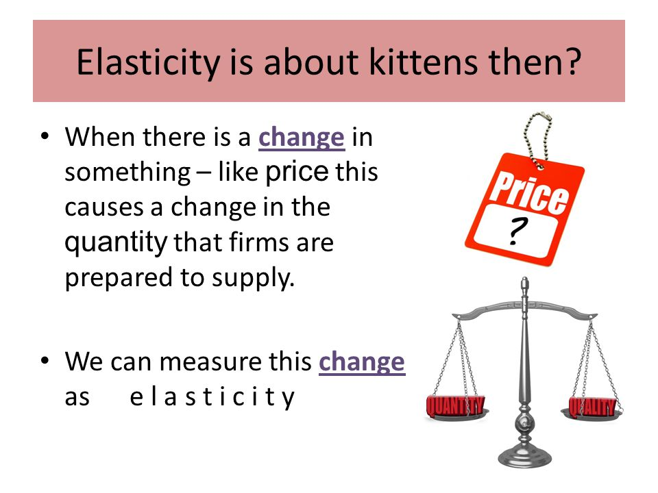 What does elasticity measure then if its not kittens...