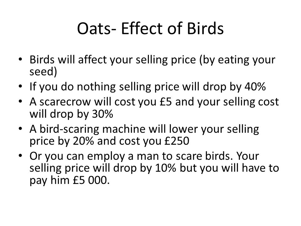 Oats- Effect of Birds Birds will affect your selling price (by eating your seed) If you do nothing selling price will drop by 40% A scarecrow will cost you £5 and your selling cost will drop by 30% A bird-scaring machine will lower your selling price by 20% and cost you £250 Or you can employ a man to scare birds.