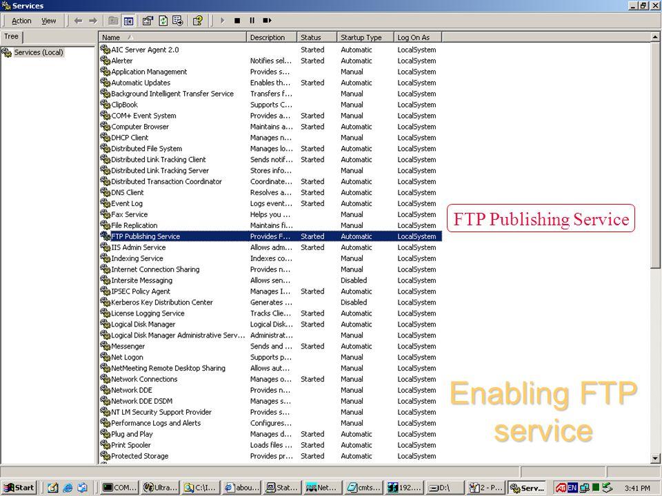 FTP Publishing Service