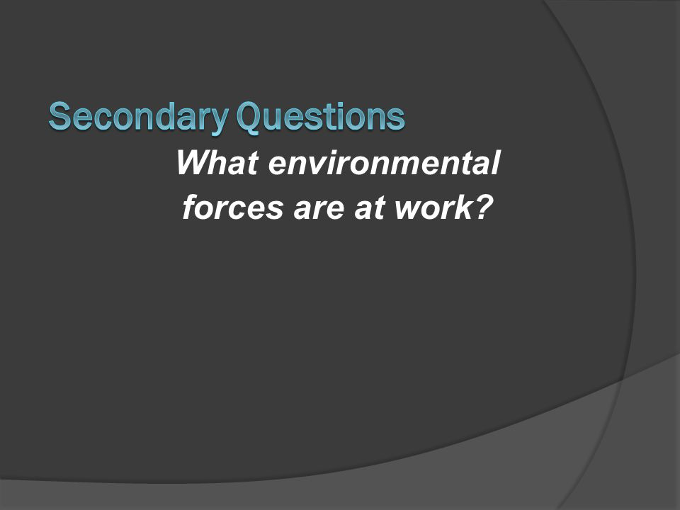 What environmental forces are at work?