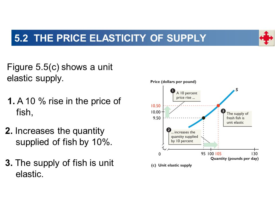 Figure 5.5(c) shows a unit elastic supply. 1. A 10 % rise in the price of fish, 2. Increases the quantity supplied of fish by 10%. 3. The supply of fi