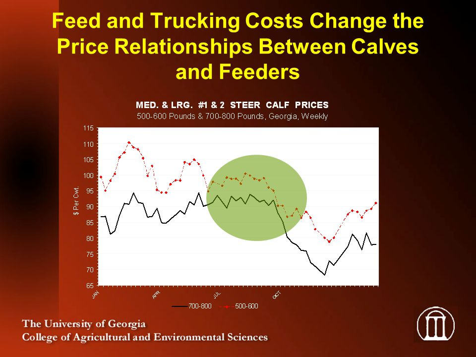 Feed and Trucking Costs Change the Price Relationships Between Calves and Feeders