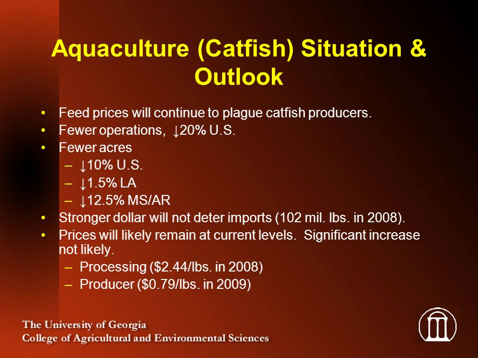 Aquaculture (Catfish) Situation & Outlook Feed prices will continue to plague catfish producers. Fewer operations, 20% U.S. Fewer acres –10% U.S. –1.5