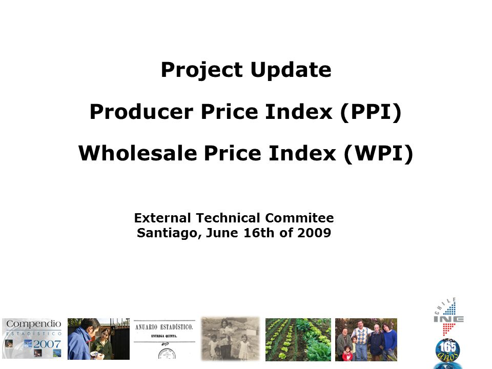 Project Update Producer Price Index (PPI) Wholesale Price Index (WPI) External Technical Commitee Santiago, June 16th of 2009