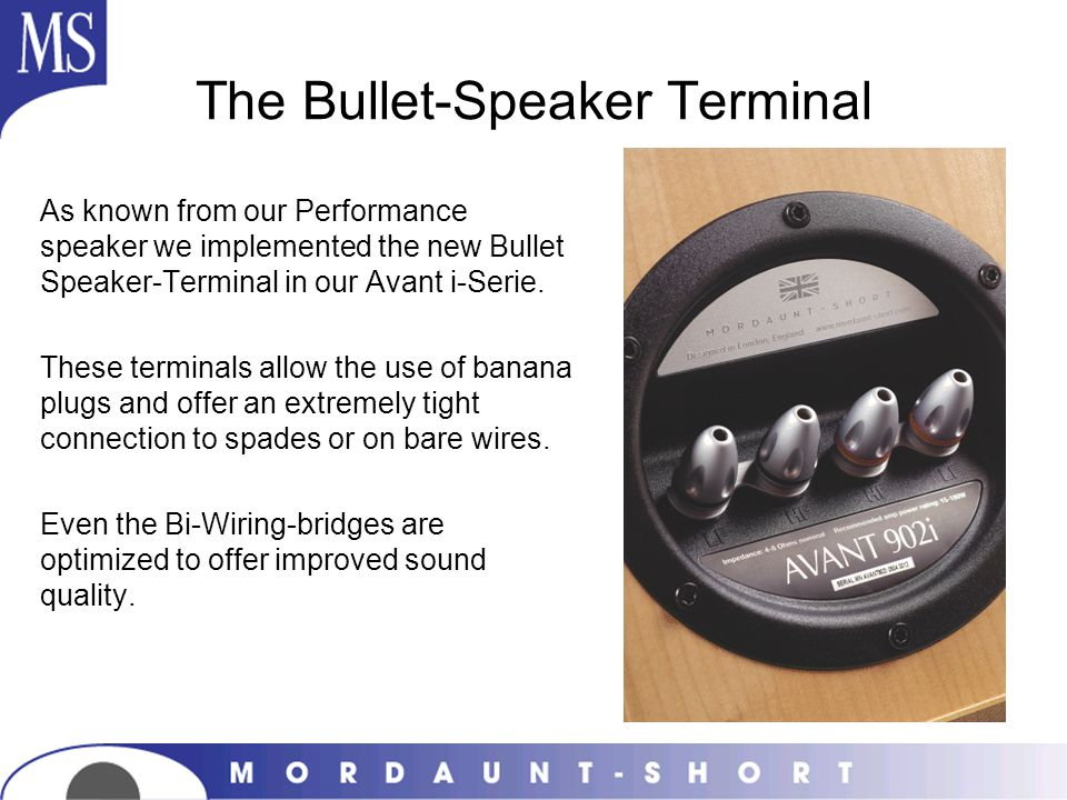 The Bullet-Speaker Terminal As known from our Performance speaker we implemented the new Bullet Speaker-Terminal in our Avant i-Serie. These terminals