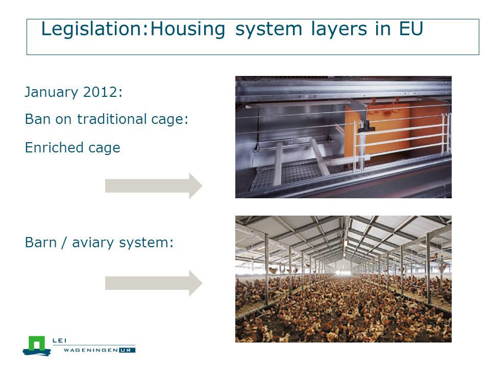 Legislation:Housing system layers in EU Barn / aviary system: January 2012: Ban on traditional cage: Enriched cage