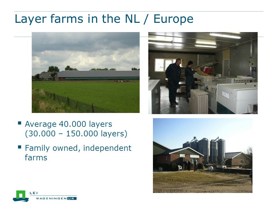 Barn: 30 -35% Free range: 7% + 3% organic Cage (enriched/ colony) 55 - 60% Housing systems in EU (% 2013, non official estimate, PvH)