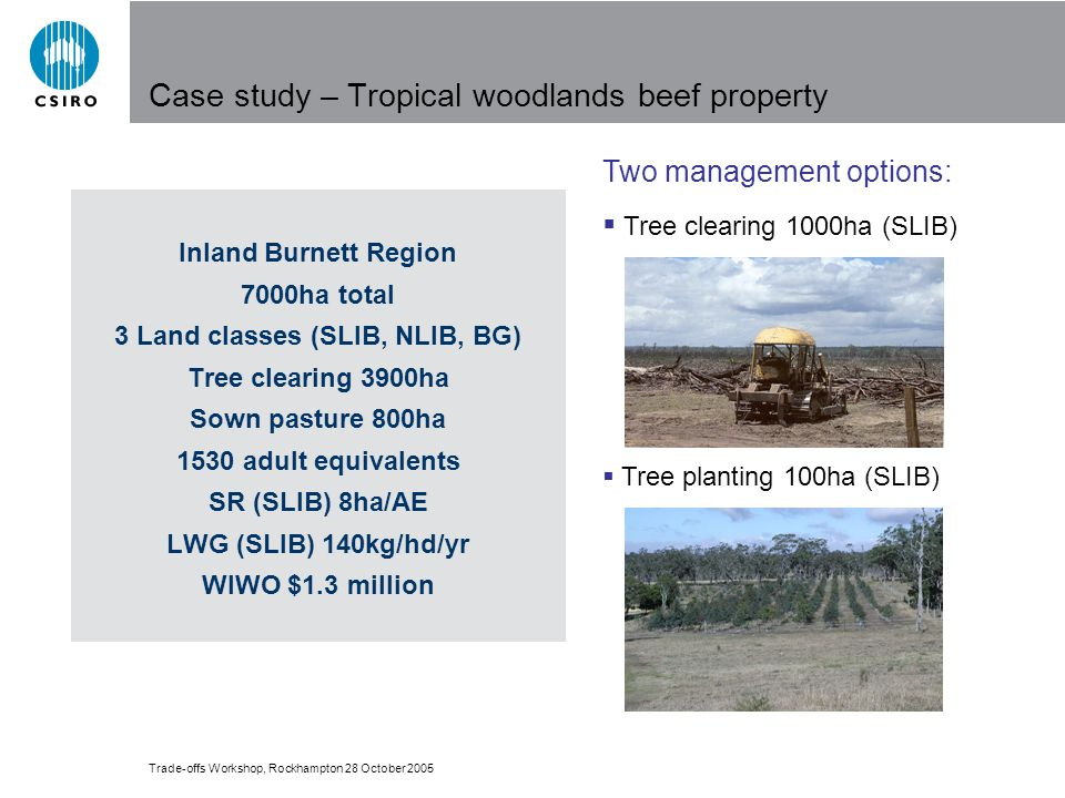 Trade-offs Workshop, Rockhampton 28 October 2005 Two management options: Tree clearing 1000ha (SLIB) Tree planting 100ha (SLIB) Case study – Tropical woodlands beef property Inland Burnett Region 7000ha total 3 Land classes (SLIB, NLIB, BG) Tree clearing 3900ha Sown pasture 800ha 1530 adult equivalents SR (SLIB) 8ha/AE LWG (SLIB) 140kg/hd/yr WIWO $1.3 million