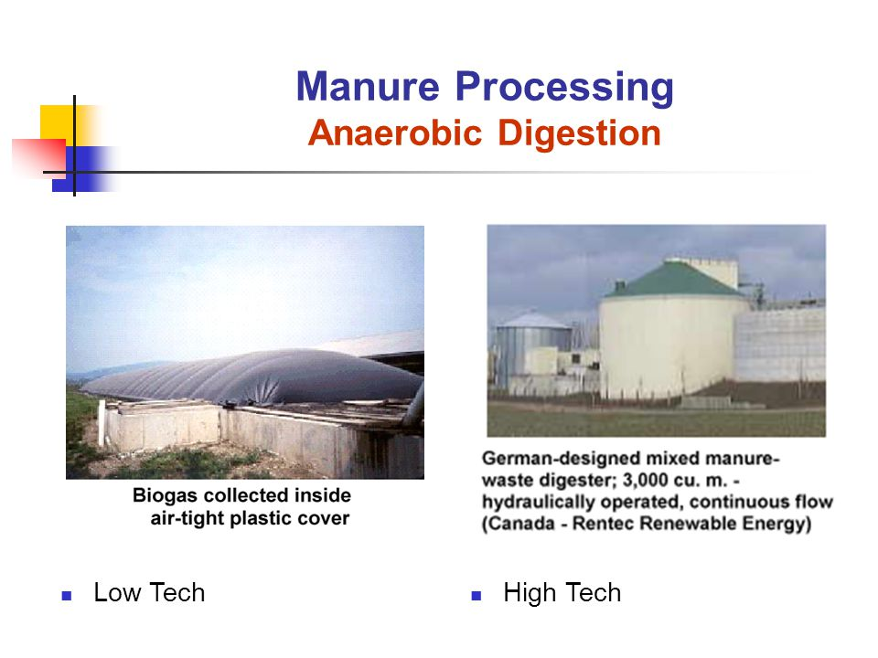 High Tech Manure Processing Anaerobic Digestion Low Tech