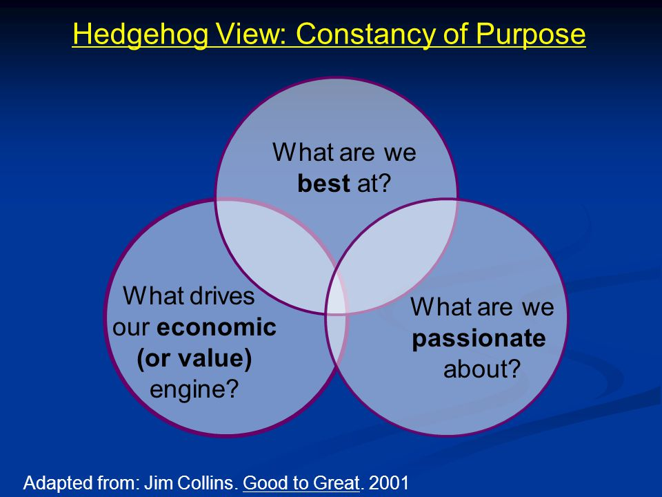 Hedgehog View: Constancy of Purpose What are we best at.