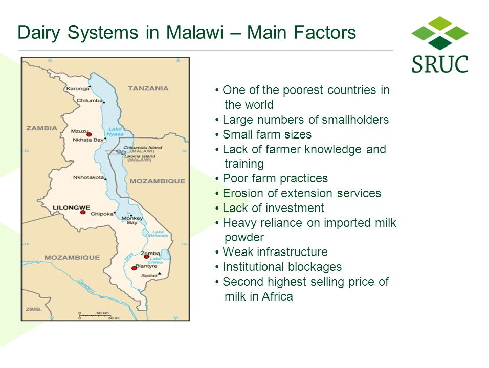33 Dairy Systems in Malawi – Main Factors One of the poorest countries in the world Large numbers of smallholders Small farm sizes Lack of farmer knowledge and training Poor farm practices Erosion of extension services Lack of investment Heavy reliance on imported milk powder Weak infrastructure Institutional blockages Second highest selling price of milk in Africa