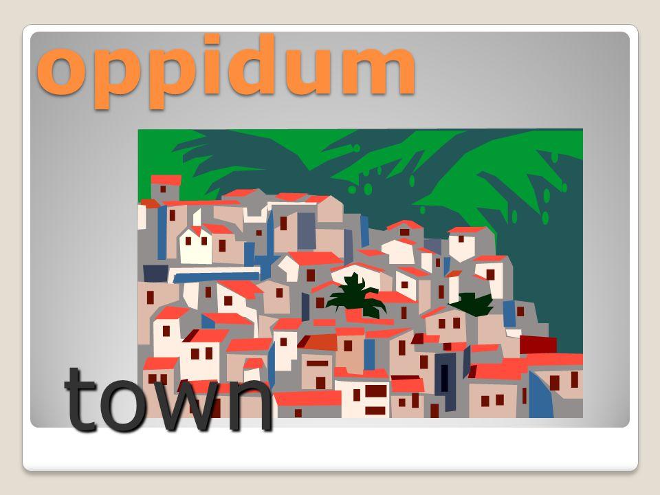 oppidum town
