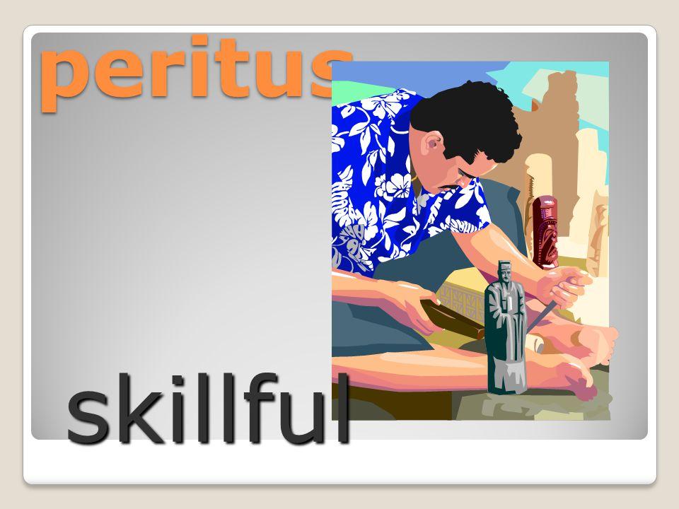 peritus skillful