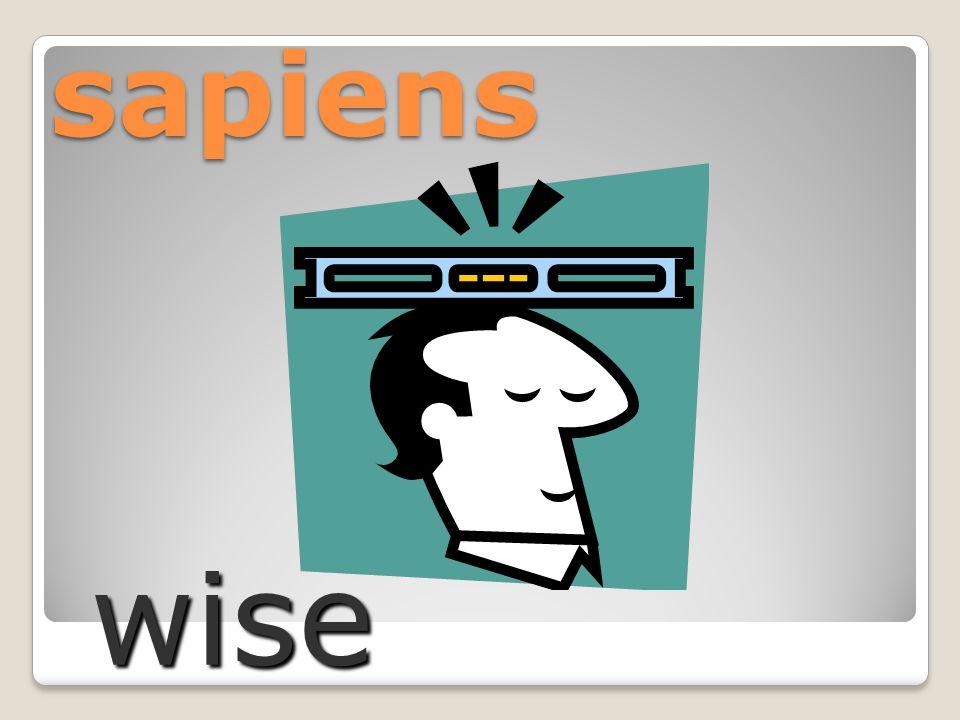 sapiens wise
