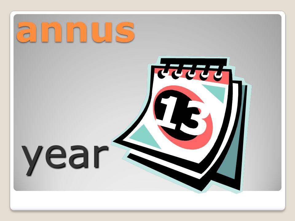 annus year