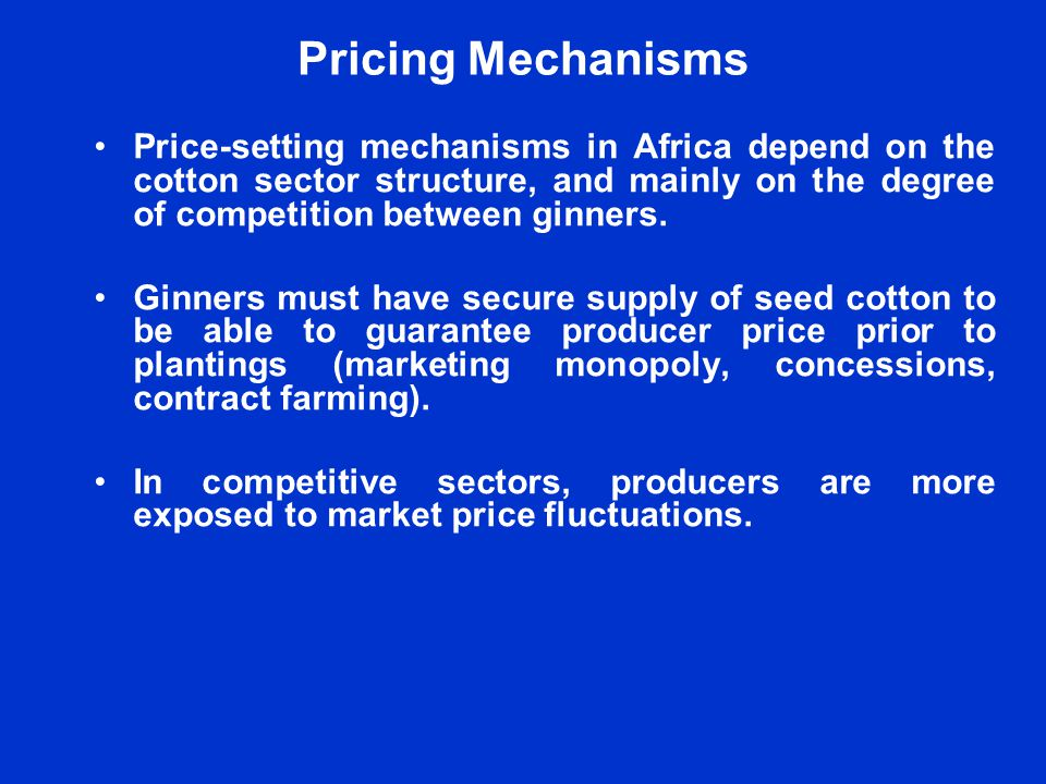 Constraints and Challenges Exchange rate are volatile (production costs in local currency while lint is sold in dollars).