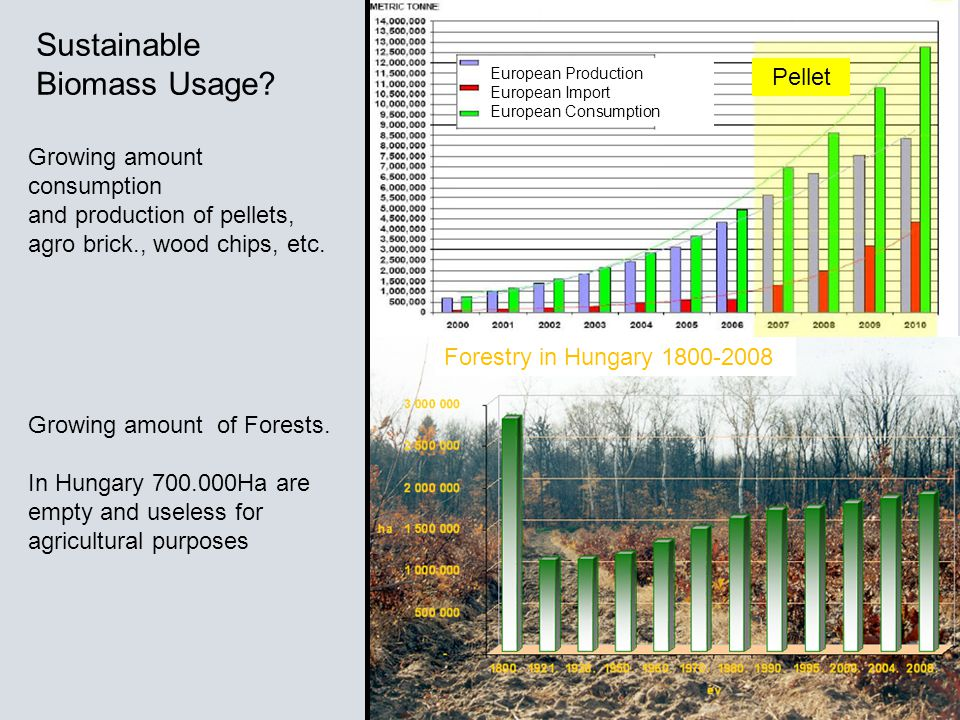Forestry in Hungary 1800-2008 European Production European Import European Consumption Growing amount consumption and production of pellets, agro brick., wood chips, etc.