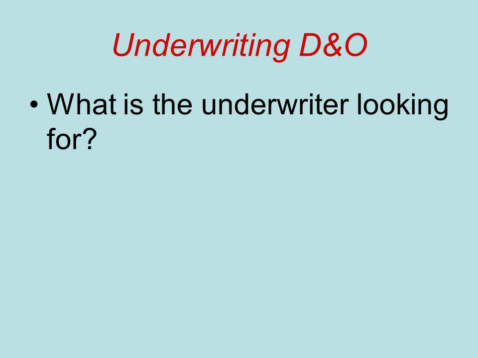 Underwriting D&O What is the underwriter looking for?
