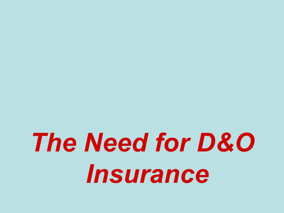 The Need for D&O Insurance