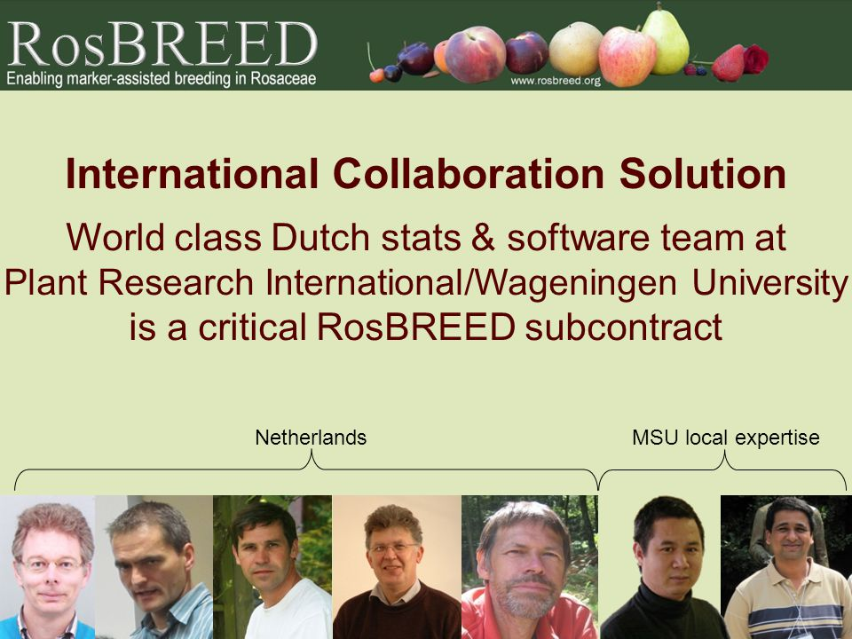 International Collaboration Solution World class Dutch stats & software team at Plant Research International/Wageningen University is a critical RosBR