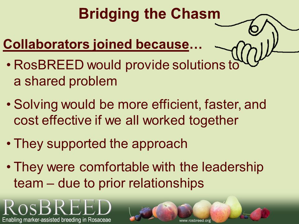 RosBREED would provide solutions to a shared problem Solving would be more efficient, faster, and cost effective if we all worked together They supported the approach They were comfortable with the leadership team – due to prior relationships Bridging the Chasm Collaborators joined because…