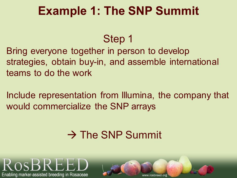 Example 1: The SNP Summit Step 1 Bring everyone together in person to develop strategies, obtain buy-in, and assemble international teams to do the work Include representation from Illumina, the company that would commercialize the SNP arrays The SNP Summit