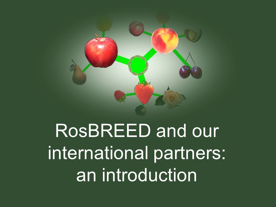 RosBREED and our international partners: an introduction