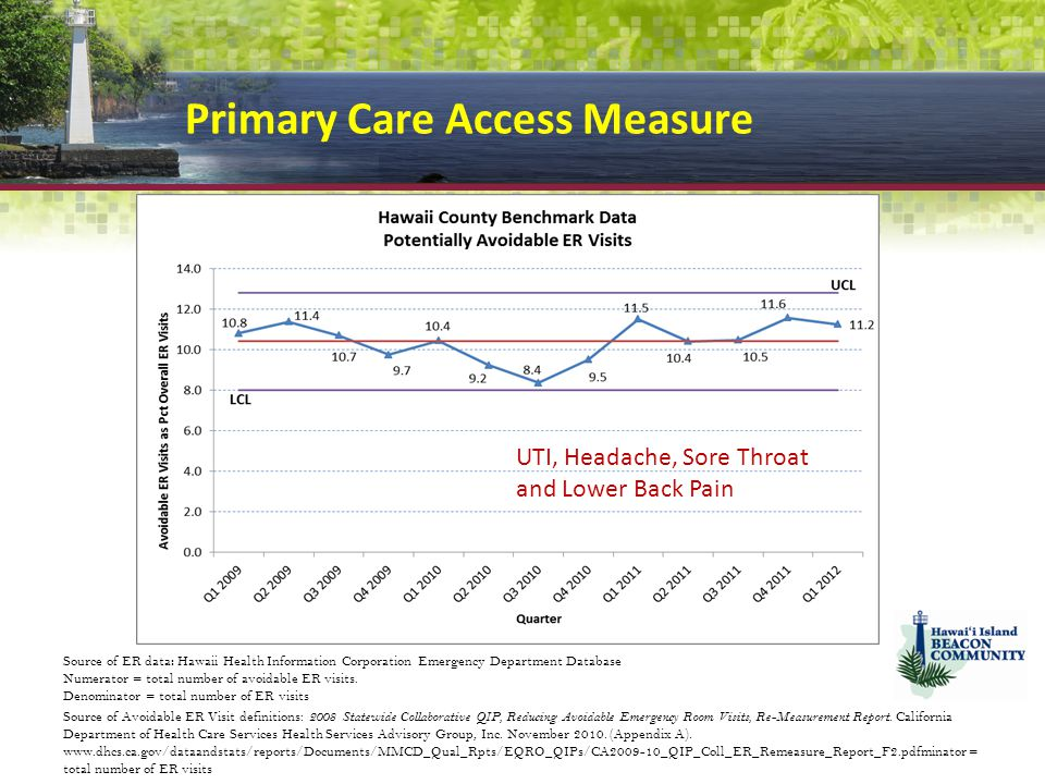 Primary Care Access Measure Source of ER data : Hawaii Health Information Corporation Emergency Department Database Numerator = total number of avoidable ER visits.