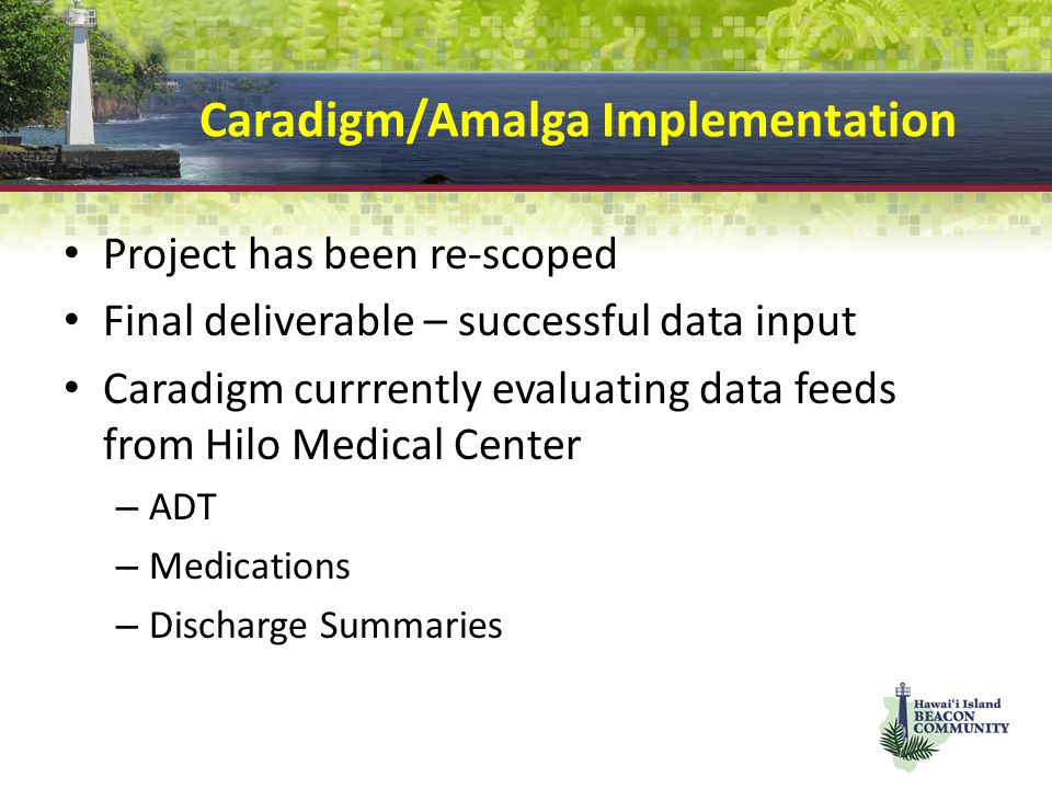 Caradigm/Amalga Implementation Project has been re-scoped Final deliverable – successful data input Caradigm currrently evaluating data feeds from Hilo Medical Center – ADT – Medications – Discharge Summaries